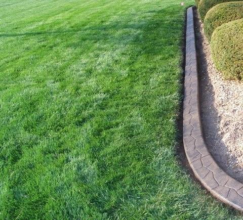 Cost Effective Backyard Ideas G Bowl